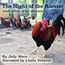 The Night of the Rooster and Other True Stories Audiobook by Jody Mace Narrated by Linda Velwest
