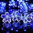 InnooTech LED Blumen Solar Lichterkette 5 Meter 50er Blau, Wasserdicht, Au�enlichterkette, Weihnachtsbeleuchtung, Solar Bl�ten Leuchtkette f�r Garten, Hochzeit, Party usw.