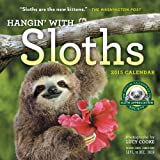 Hangin' with Sloths 2015 Wall Calendar