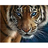 DMC Thread 14CT Counted Cross Stitch Kits Tiger Handmade Embroidery Pattern Needlecraft Room Decor (Tiger) (Color: Tiger)