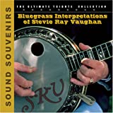 echange, troc Various Artists - Bluegrass Interpretations Stevie Ray Vaughan