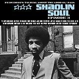 Shaolin Soul 3