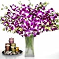 Fresh Flowers - 20 Premium Purple Dendrobium Orchids with Vase by Just Orchids
