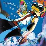 「antinotice」 /「 花弁」【初回盤】
