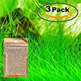 3 Pack Water Plant Seeds Water Grass Seed Tall Hairgrass Buffalo Seeds Easy Aquatic Live Grow Plants Fish Tank Decoration Landscape Ornament Aquarium Decor Foreground (Big)
