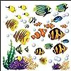 Under the Sea Tropical Fish Nursery/K…