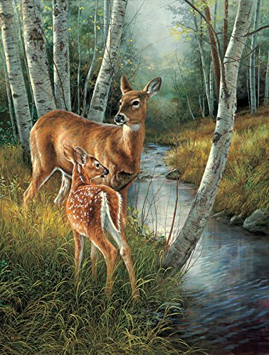 Birch Creek a 500-Piece Jigsaw Puzzle by Sunsout Inc.
