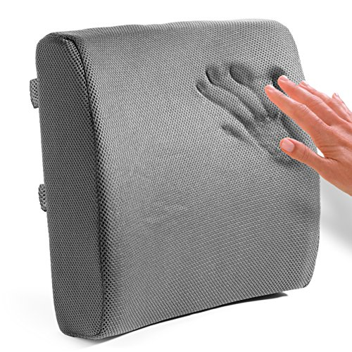 Easy Posture Lumbar Support Back Cushion for Desk Chair Memory