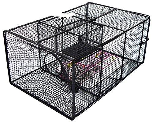 栄工業 ネズミ捕り ブラックBOXシリーズ スーパーラットV QB30 R-07