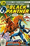 The Black Panther#22 (Vol. 1 No.22 July 1976)