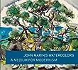 John Marin's Watercolors: A Medium for Modernism (Art Institute of Chicago)