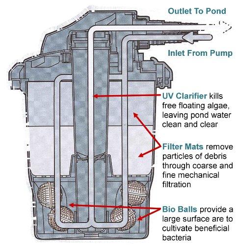 Anjon simply clear 1000 gallon pond pressure bio filter for 1000 gallon fish pond