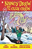 img - for Nancy Drew and the Clue Crew #3: Enter the Dragon Mystery book / textbook / text book