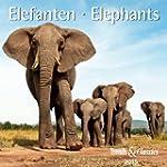 Elefanten - T & C-Kalender 2015