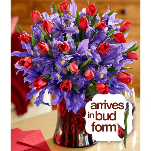 Deluxe Hugs and Kisses with FREE glass vase - FlowersB0001GU7DI : image