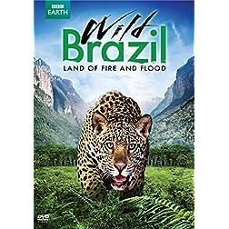 Wild Brazil: Land of Fire & Flood