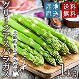 長崎県 五島列島産 グリーンアスパラガス 平成28年産 (1kg)