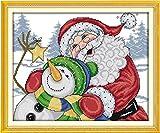 図柄印刷 可愛い楽しいクリスマスクロスステッチキット 刺繍キット 中級者向け刺しゅう 装飾品 プレゼント 客間、部屋、書斎を飾る [並行輸入品]