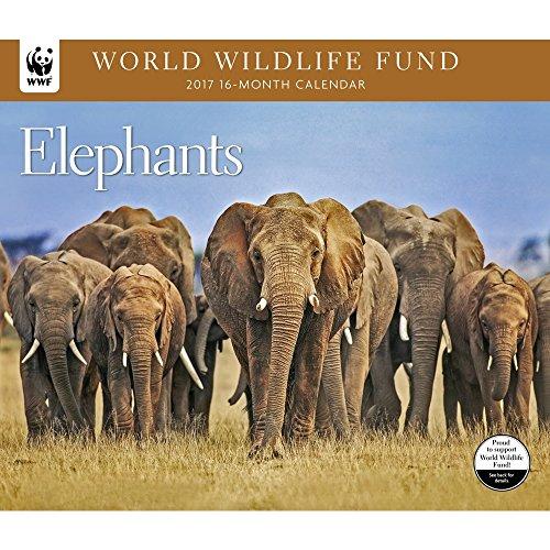 2017-world-wildlife-fund-elephants-deluxe-wall-calendar