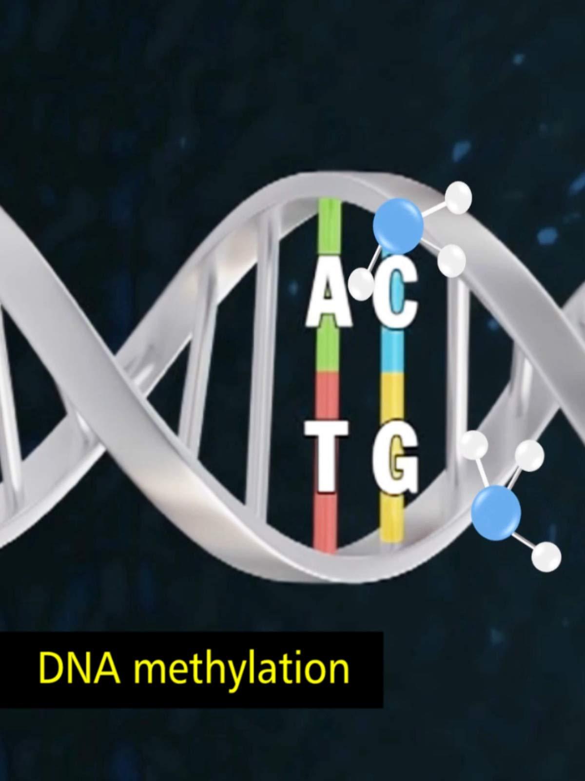 Beyond Genetics on Amazon Prime Video UK