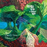 When Sweet Sleep Returned [Vinyl]