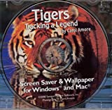 Tigers : Tracking A Legend by Carole Amore (Jewel Case)