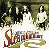 Junior's Wailing by STEAMHAMMER (2002-11-21)