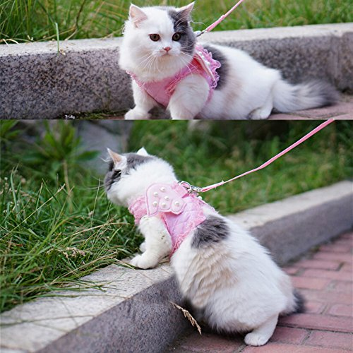 Adorable Cat Dog Kitty Puppy Safety Walking Vest Harness Leash Set Wings Costume Lace Peals (Pink, Medium)