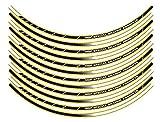 エムディーエフ(MDF) リムストライプ レタリング有り ストロボ/パンプキンイエロータイプ ライン幅:10mm  リムサイズ:15インチ (バイク・オートバイ) RIM-10M-STPY-15