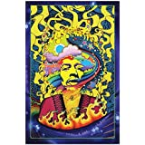 Jimi Hendrix Psychedelic Art Poster