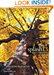 Splash 13, Alternative Approaches: Th...