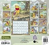 2011  Winnie the Pooh  Wall Calendar