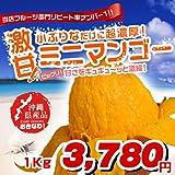 沖縄県産ミニマンゴー 1kgセット ランキングお取り寄せ