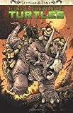 img - for Teenage Mutant Ninja Turtles: Turtles in Time book / textbook / text book