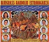 echange, troc Various Artists - Bluegrass Mandolin Extravaganza