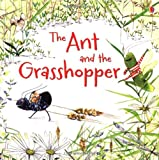 Lesley Sims The Ant and the Grasshopper (Usborne Picture Books)