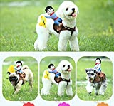 Pethome Puppy Dog Shirt Rider Cowboy Horse Riding Pet Costume Outfit Apparel