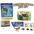 Velociraptor Dinosaur Dig Kit -Excavate 3 Real Dino Fossils!