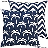 Chloe & Olive Palm Beach Collection Tropical Chevron Reversible Outdoor Pillow Cover, 18-Inch, Geometric, Blue/White