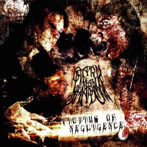 Dark Man Shadow-Victims Of Negligence-CD-FLAC-2013-VENOMOUS Download