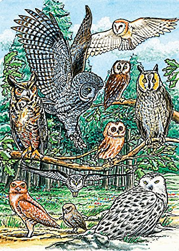 Cobble Hill North American Owls Jigsaw Puzzle, 35-Piece