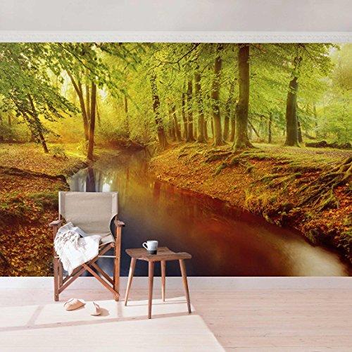 das original premium vlies fototapete wald herbstwald vliestapete tapete waldtapete. Black Bedroom Furniture Sets. Home Design Ideas