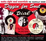 echange, troc Compilation - Nashville Sound : Rare Soul Treasures From Challenge, Dial And Hickory