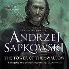 The Tower of the Swallow: A Witcher Novel Hörbuch von Andrzej Sapkowski Gesprochen von: Peter Kenny