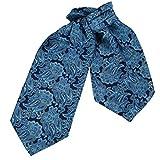 ERA1B06B Blue Paisley Excellent Store Cravat Woven Microfiber Whole Sale Presents Mens Ascot By Epoint