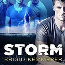 Storm: Elemental, Book 1 (       UNABRIDGED) by Brigid Kemmerer Narrated by Renée Chambliss
