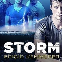 Storm: Elemental, Book 1 (       UNABRIDGED) by Brigid Kemmerer Narrated by Renée Chambliss