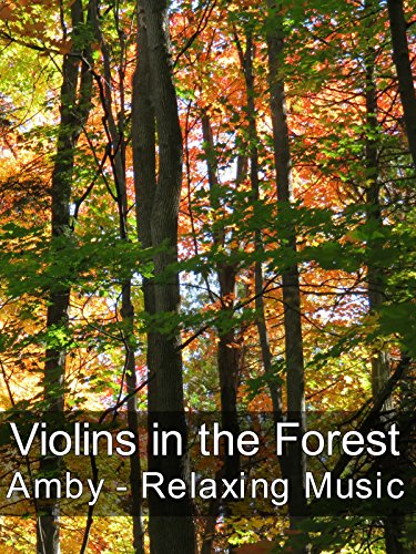 Violins in the Forest