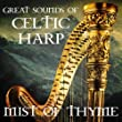 Great Sounds Of Celtic Harp