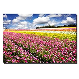 Field of Flowers IV by Alan Hausenflock Premium Gallery-Wrapped Canvas Giclee Art (Ready-to-Hang)